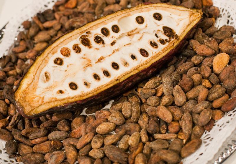 Какао-боб фото