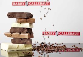 Шоколадная фабрика Barry Callebaut