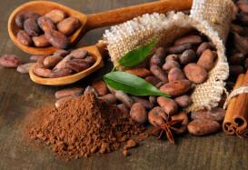 Волшебный напиток ацтеков: все о какао